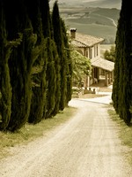 Италия. Тоскана. Typical Tuscan landscape. Фото  Jakub Pavlinec - Depositphotos