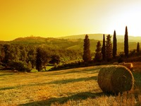 Италия. Тоскана. Sunset Tuscany landscape San Gimignano on the background. Фото Photozek07 - Depositphotos