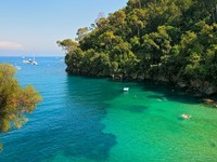 Италия. Портофино. Small bay and cliff covered with trees in Portofino, Italy. Фото Rostislav Glinsky - Depositphotos