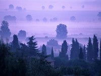 Италия. Тоскана.  Dawn in Tuscany. Фото Fairybloom - Depositphotos