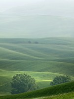Италия. Тоскана. Rural countryside landscape in Tuscany region of Italy. Фото pitrs10 - Depositphotos
