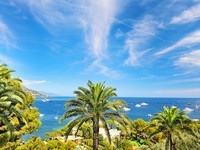 Франция. Ривьера.  Sea landscape with palm trees and blue sky. Фото Liliana Fichter - Depositphotos