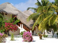 Sheraton Maldives Full Moon Resorts&Spa. Beachfront Deluxe