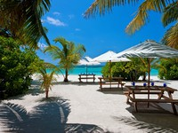 Sheraton Maldives Full Moon Resorts&Spa. Coconut Grove Lunch