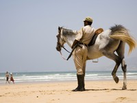 Марокко. Агадир. Mounted policeman keeps order on coastline. Agadir, Morocco. Фото Alexey Kuznetsov - Depositphotos