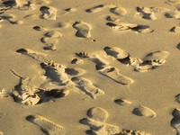 Марокко. Агадир. Footsteps in the sand at sunset. Фото Joerg Hackemann - Depositphotos