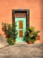 Марокко. Марракеш. Old door with plant in Marrakesh. Фото ragnarok - Depositphotos