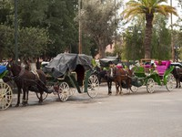 Марокко. Марракеш. Медина. Carriage in Marrakech (Morocco). Фото Daniel Garcia Villanueva - Depositphotos