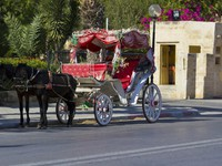 Марокко. Марракеш. Медина. Horsedrawn carriage in Tunisia. Фото Karl Bloch - Depositphotos