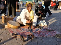 Марокко. Марракеш. Джемма эль Фна. Snake charmer at Djemaa el Fna square in Marrakesh. Фото Philip Lange - Depositphotos