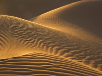 Марокко. Пустыня Сахара. Sand dunes glow in the evening sun in the moroccan Sahara. Фото Rosa Frei - Depositphotos