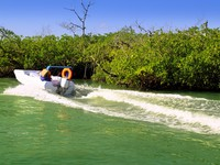 Мексика. Boating in mangroves in Mayan Riviera Mexico. Фото lunamarina - Depositphotos