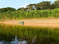 Boat in jungles of Peru. Madre de Dios River. Фото Nika Lerman - Depositphotos