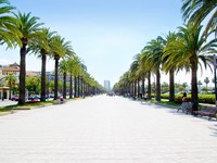 Испания. Каталония.  Beach boulevard in Salou with palm trees in Tarragona Spain. Фото TONO BALAGUER SL - Depositphotos