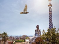 Испания. Барселона. Парк Гуэль (арх. А.Гауди). Park Guell in Barcelona, Spain. Фото artjazz - Depositphotos