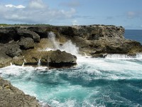 Блог Павла Аксенова. Карибы. Барбадос. The rugged coral rocks and foamy sea of the North Point, Barbados. Фото Jane Rix - Depositphotos