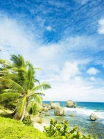 Блог Павла Аксенова. Карибы. Барбадос. Bathsheba, East coast of Barbados, Caribbean. Фото Richard Semik - Depositphotos