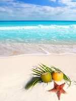 Coconut cocktails juice and starfish in tropical aqua beach Caribbean. Фото TONO BALAGUER SL - Depositphotos